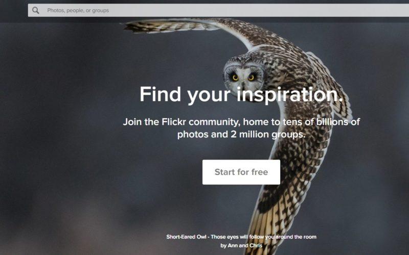 flickr alternatives sites like flickr